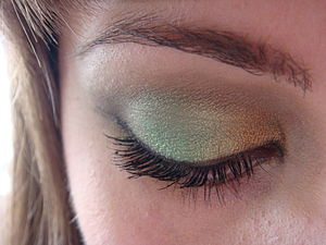 Colors used: Urban Decay Book of Shadows: Absi...