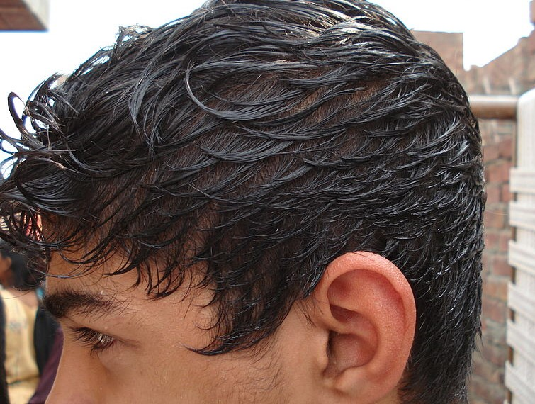 What Is The #1 Hair Problem That Men Complain About? Oily Hair & Scalp!